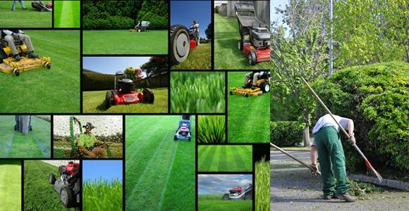 Entretien d 39 espace vert 59 lille jardinage lille 59000 for Entretien materiel jardinage